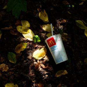Renomowany znak towarowy McDonalds