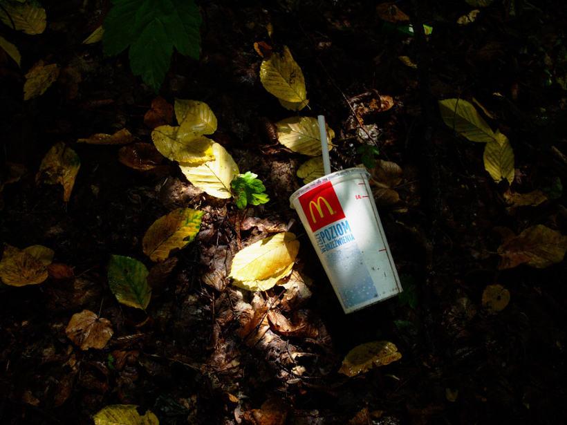śmiecenie w lesie