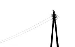 zawyżone rachunki prąd
