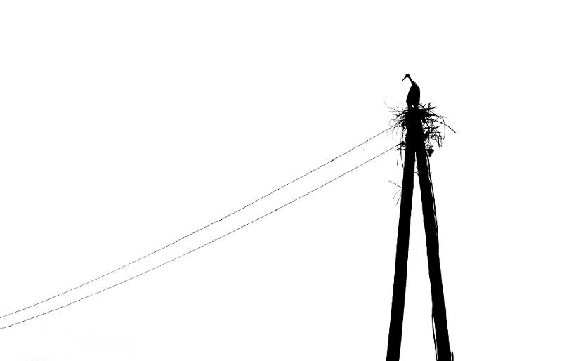 wprowadzenie klientów błąd dostawca prądu