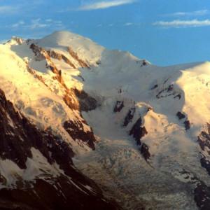 fałszywy przewodnik górski