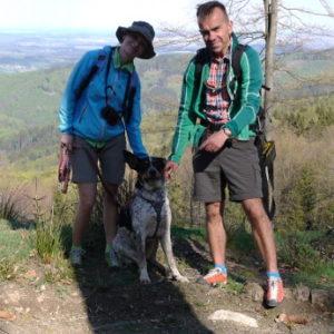 pies Góry Sowie