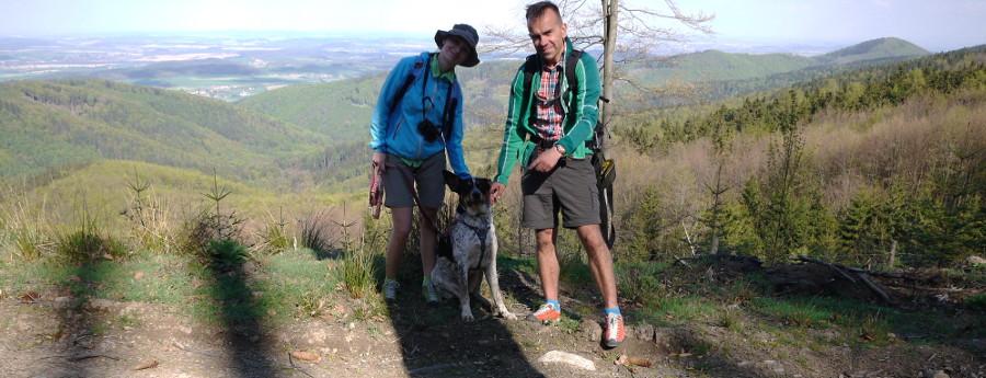 pies Góry Stołowe