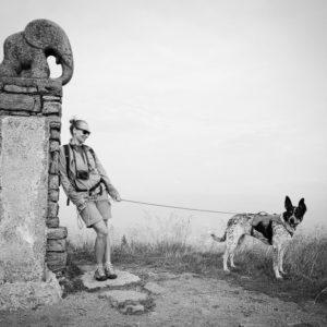 wyprowadzacz psów odpowiedzialność