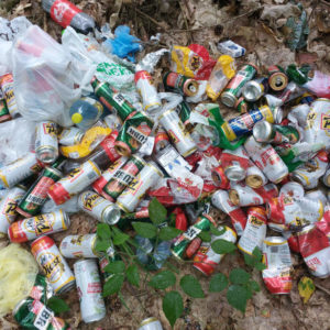 Wyrzucanie śmieci las