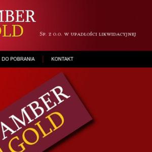 Oskarżony prezes Amber Gold publikacja nazwiska wizerunku