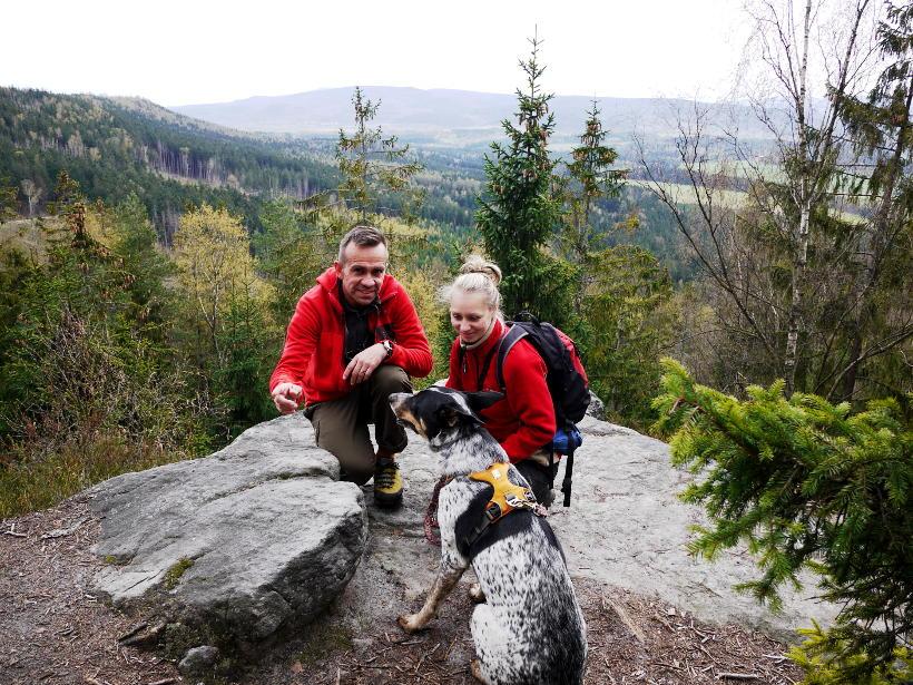 Góry Stołowe pies Ruffwear