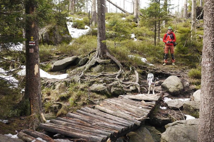 Góry Stołowe czerwony szlak na Błędne Skały