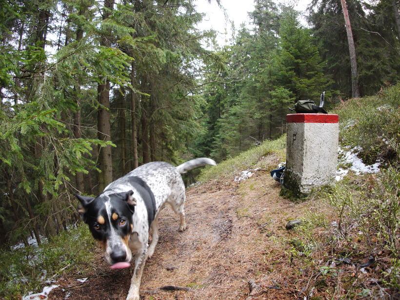 psem górach zawory