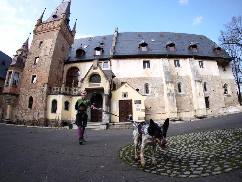 Zamek Górka