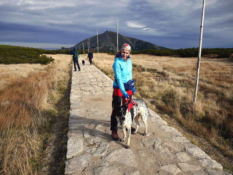 psem górach czeskie karkonosze