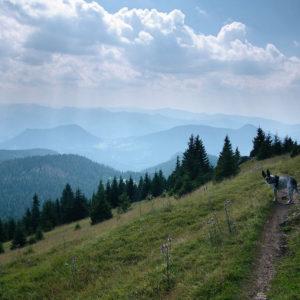 Góry Choczańskie Wielki Chocz psem