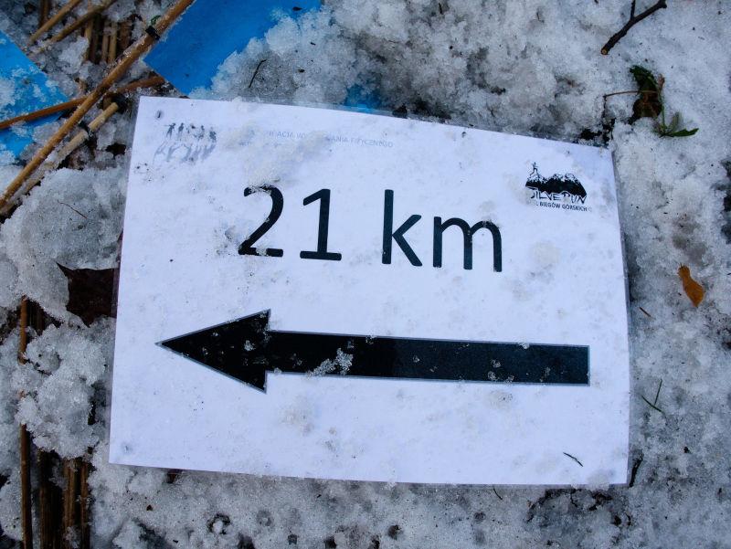 bieg silver run góry sowie śmieci