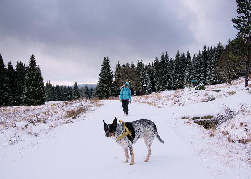 czeskie góry izerskie zimą