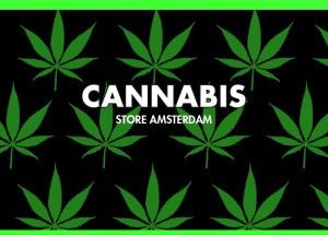 znak towarowy cannabis store amsterdam