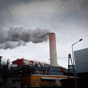 prawo życia czystym środowisku